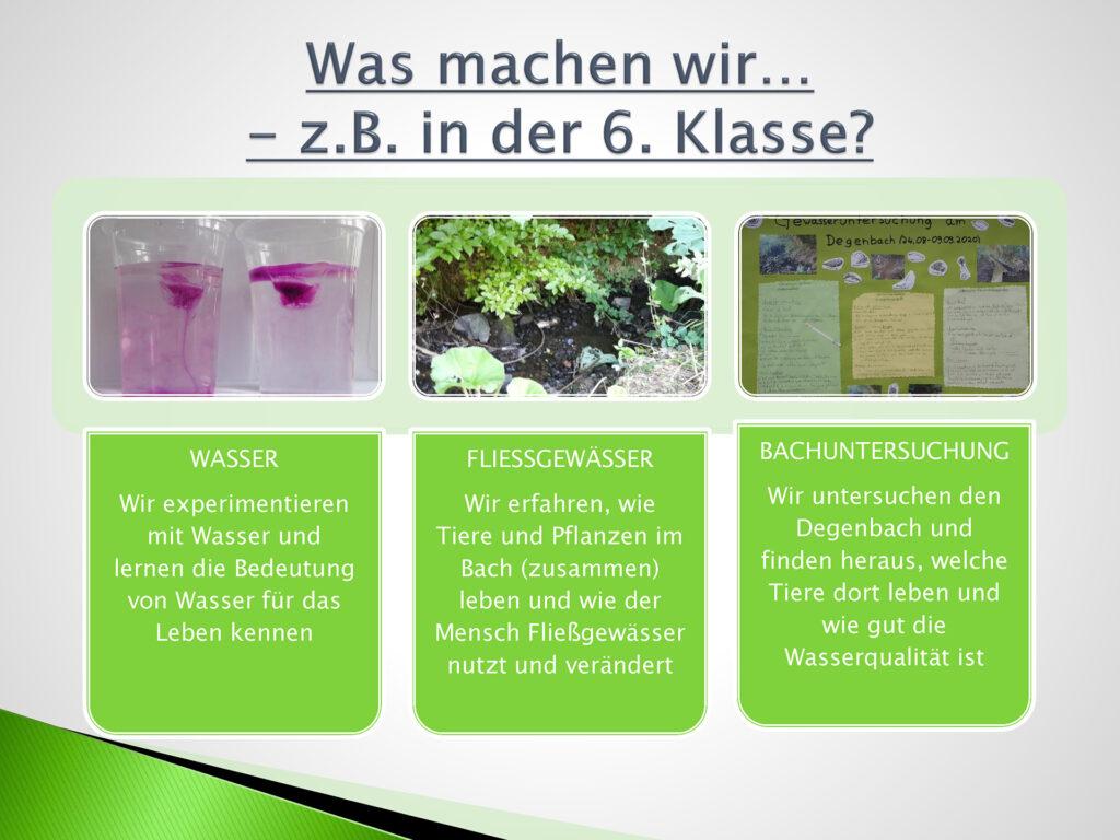 Ökologie-&-Naturwissenschaften_Seite_3